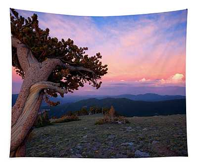 Lonesome Pine Tapestry