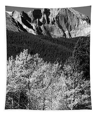 Longs Peak 14256 Ft Tapestry