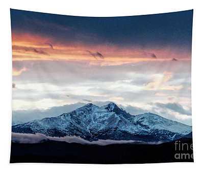 Longs Peak In Winter Tapestry