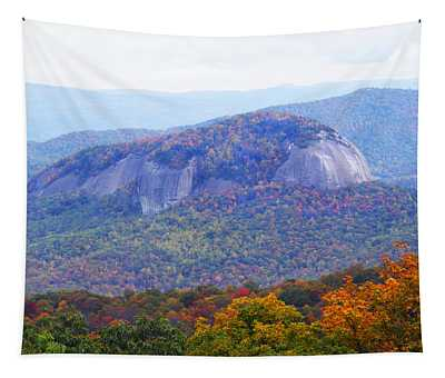 Looking Glass Rock 2 Tapestry
