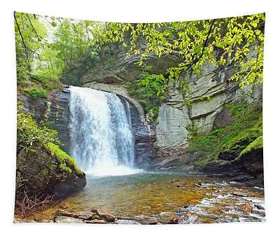 Looking Glass Waterfall In The Spring 2 Tapestry