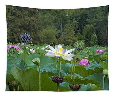 Lotus Blossoms Tapestry