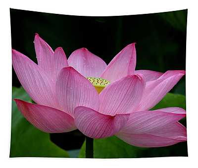 Lotus-center Of Being IIi Dl033 Tapestry