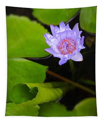 Lotus Flower And Lily Pad Tapestry
