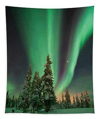 Magic Winter Night Tapestry
