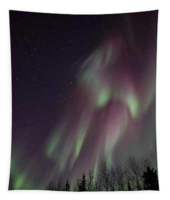 Magnificence Tapestry