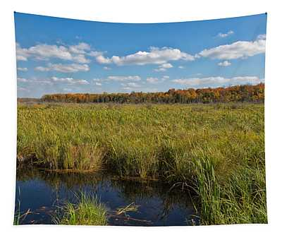 Magnificent Minnesota Marshland Tapestry