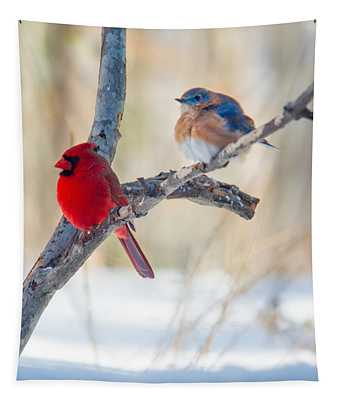 Male Bluebird And Cardinal On Branch Tapestry