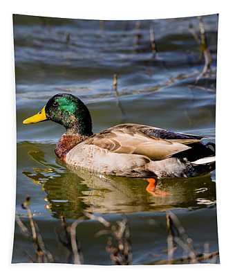 Mallard In Pond Tapestry