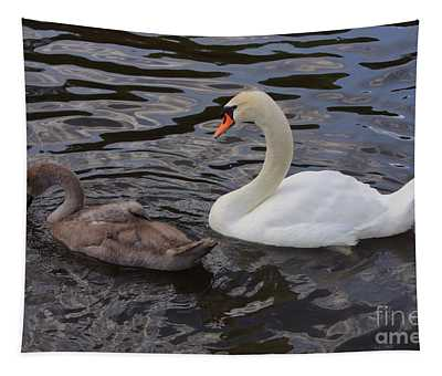 Mama And Baby Swan Tapestry