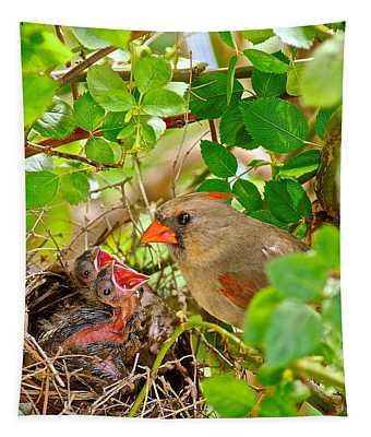 Mama Bird Tapestry