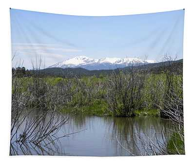 Lake Manitou Sp Woodland Park Co Tapestry