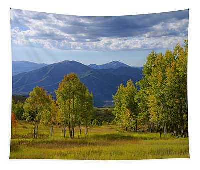 Meadow Highlights Tapestry