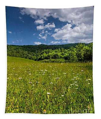Black Rock Mountains Tapestry