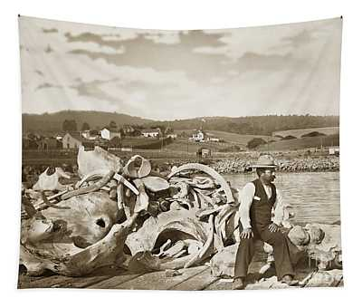 Michael Noon Sitting On A  Pile Of Whale Bones Monterey Wharf  Circa 1896 Tapestry