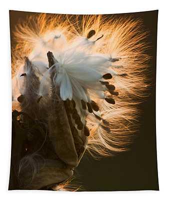 Milkweed Seed Pod Tapestry