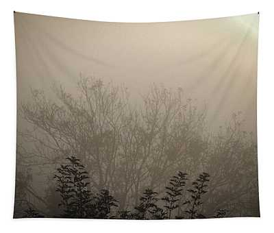 Tapestry featuring the photograph Misty Morning by James Truett