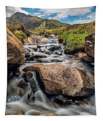 Moel Siabod Stream  Tapestry