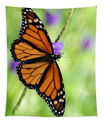 Monarch Butterfly In Spring Tapestry
