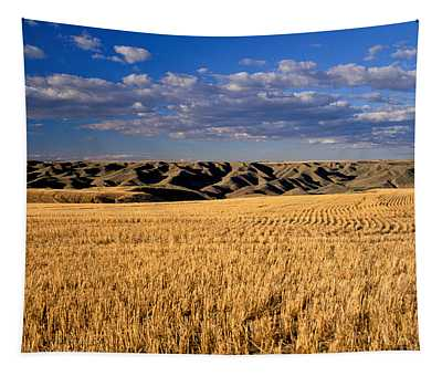 Montana   Field And Hills Tapestry
