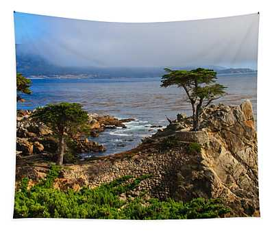 Monterey Lone Cypress Photograph By Richard Balison