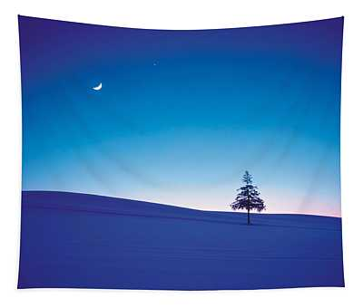 Moon In Sky And Single Tree Tapestry