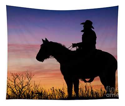Moon On The Range Tapestry