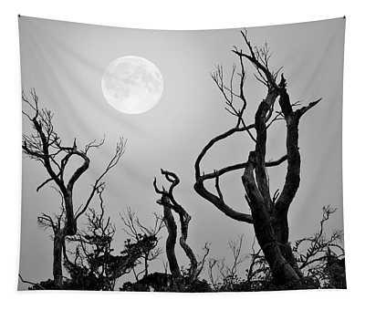 Moon Whisperer Tapestry