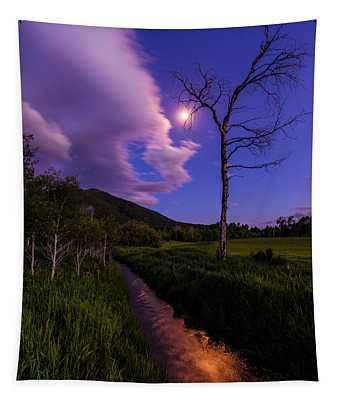 Moonlight Meadow Tapestry