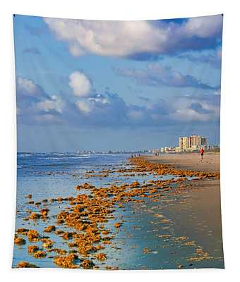 Morning Light #1 - Cocoa Beach - Florida Tapestry