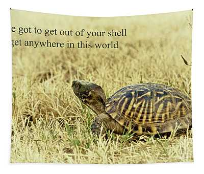 Motivating A Turtle Tapestry