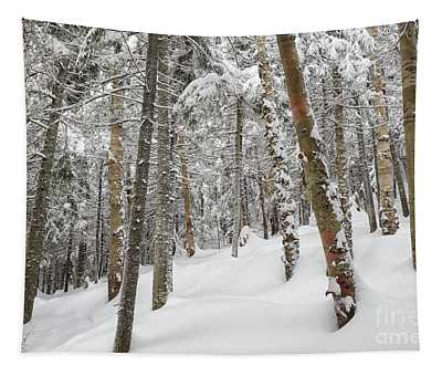 Mount Jim - Kinsman Notch New Hampshire Usa  Tapestry