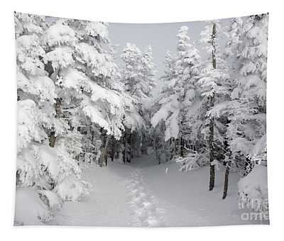 Mount Osceola Trail - White Mountains New Hampshire Tapestry