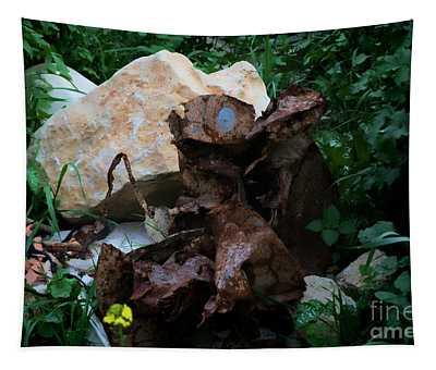 Mount Trashmore - Series Xvi Tapestry