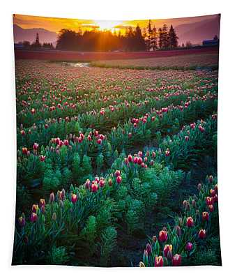 Mount Vernon Morning Tapestry