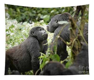Mountain Gorillas Tapestry