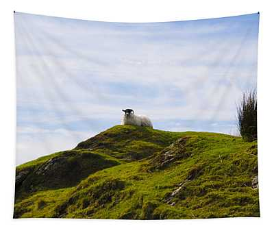 Mountain Sheep Tapestry