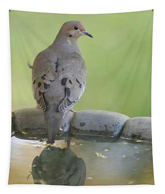 Mourning Dove Reflection Tapestry