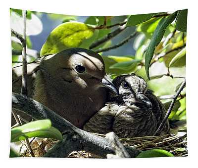 Morning Doves Mom And Babe Tapestry