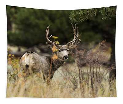 Mule Deer I Tapestry