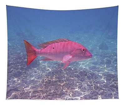 Mutton Snapper Profile Tapestry