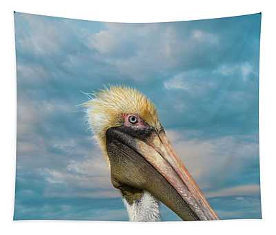Tapestry featuring the photograph My Better Side - Florida Brown Pelican by Kim Hojnacki