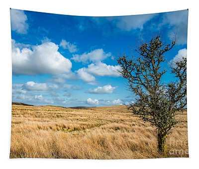 Mynydd Hiraethog Tapestry