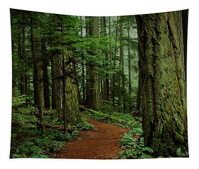 Mystical Path Tapestry