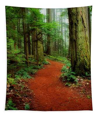 Mystical Trail Tapestry