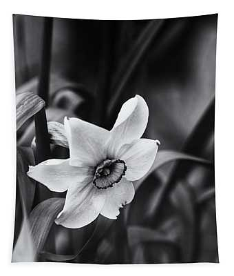 Narcissus In The Shadows Tapestry