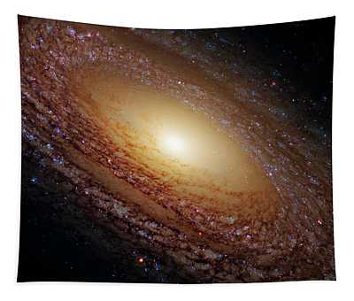 Ngc 2841 Tapestry