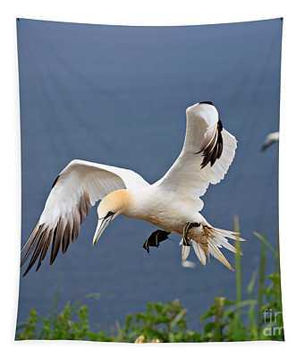 Northern Gannet In Flight Tapestry