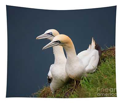 Northern Gannets Tapestry