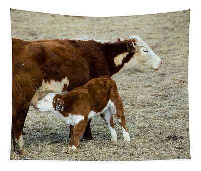 Nursing Calf Tapestry